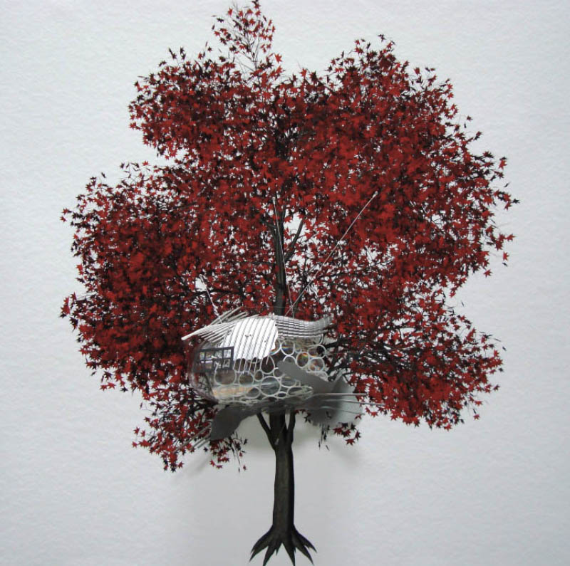 The Painted Distances (Acer Palmatum) 2008