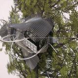 The Painted Distances (Sorbus aucuparia) 2008