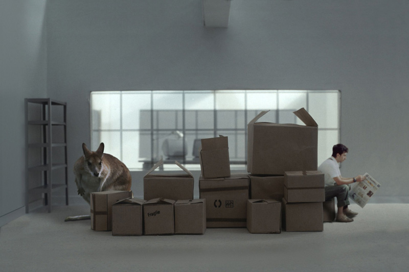 Zooffi�ce, 2001