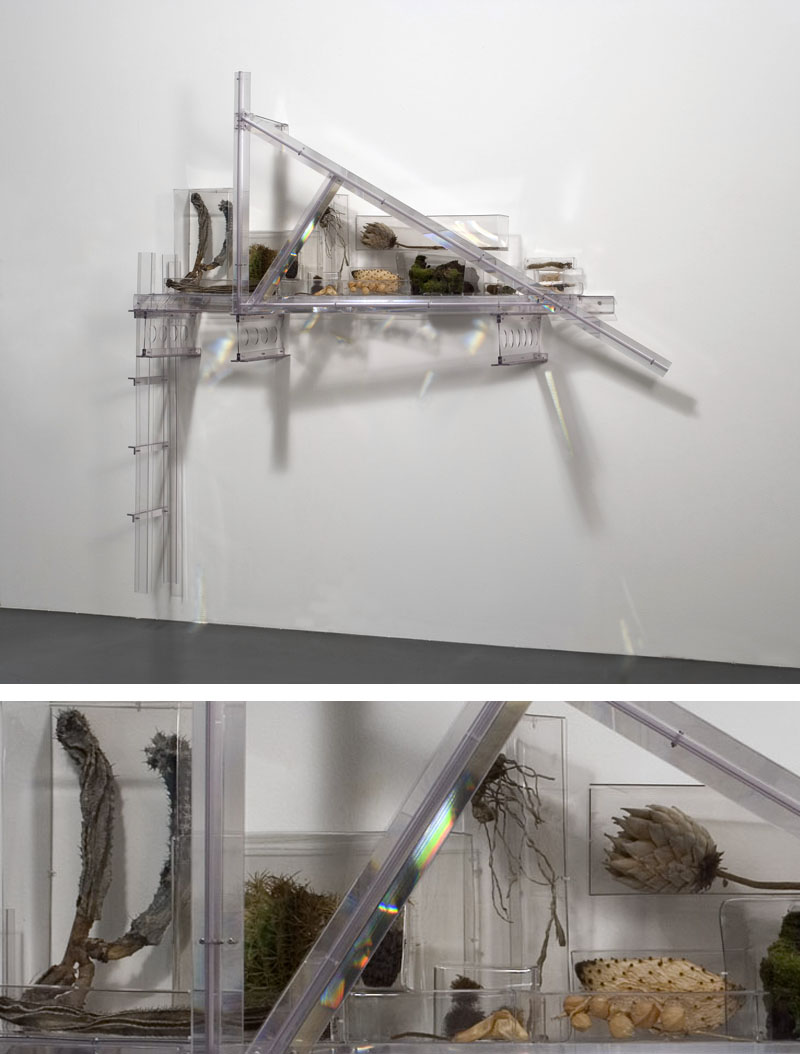 Rainbow Trusses (studio suggestions creatures II), 2009