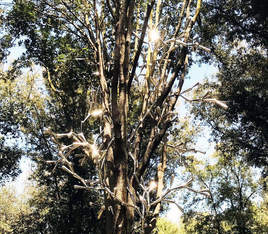 Arborexcence 2021