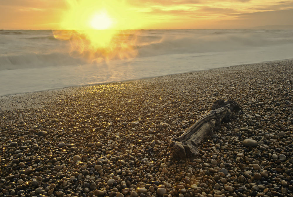 Driftwood and Setting Sun