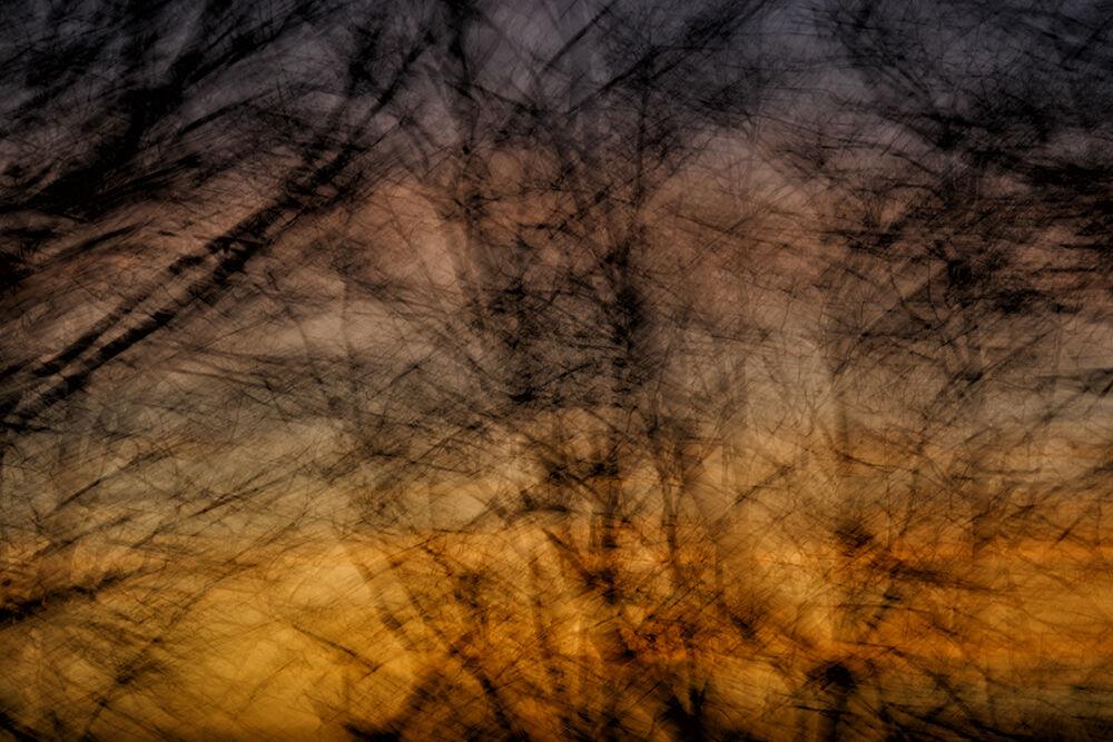 Enchanted Evening IV