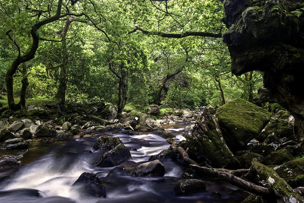 Plym River
