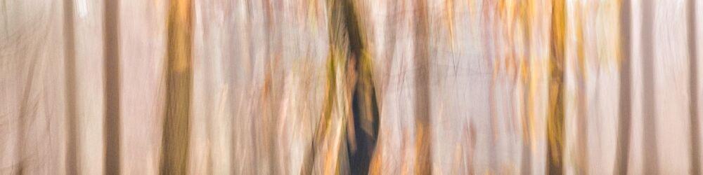Tree Sonata 9