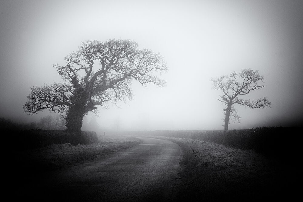 Devon Lanes 2