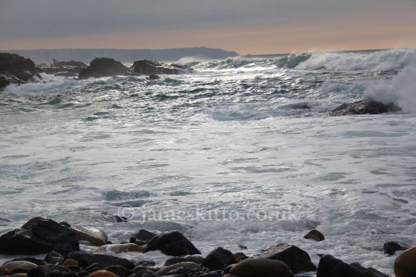 Waves at Priest's Cove