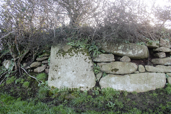 Rosemodress hedge stone