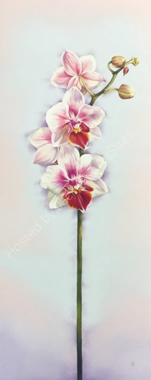 Flourishing Orchid