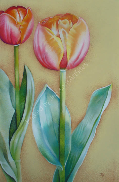 Trio of Tulips