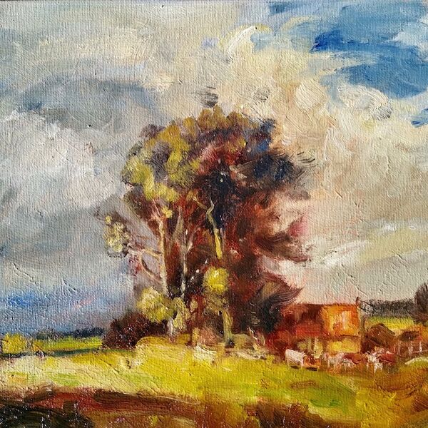 "FOR SALE 14 x 10"" Landscape oil painting study of cottages and cows with trees29th May 2020 James P McAteer"