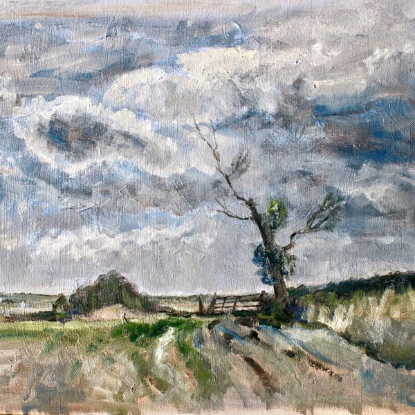 Landscape oil painting study trees and gate James P McAteer