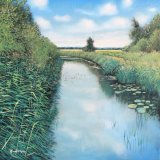 Down by the lode, Wicken Fen, 40cm sq