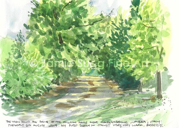 The view down the drive at the holiday house near Montegabbione, Umbria, Italy. My first sketch in Italy! Very, very warm, breezy, 6th August 2019