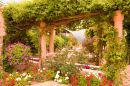 Garden in Cabrera Spain