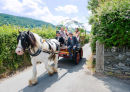 Cara and her Father on way to Church in the Horse and Cart