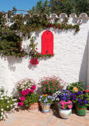 Corner of a Spanish garden