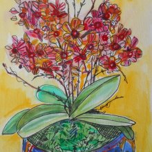 Orchid - watercolour and ink.