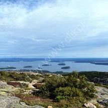 From Cadillac Mountain, Acadia N.P.
