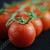 Tomatoes 2