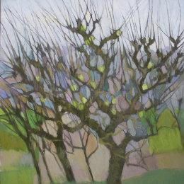 Bibury Orchard 2 test