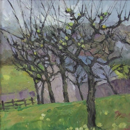 Bibury Orchard 3