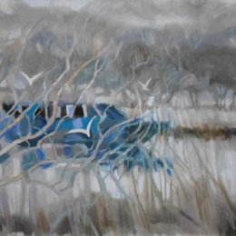 Blue Boat in the floods 1