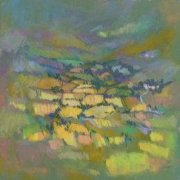 Fields Cumbria