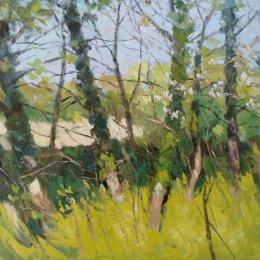 Meadow Lane Spring Morning