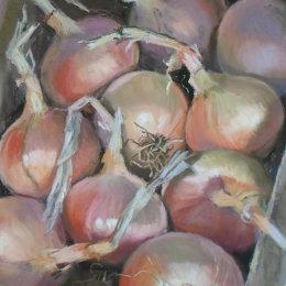 Onion Harvest 2