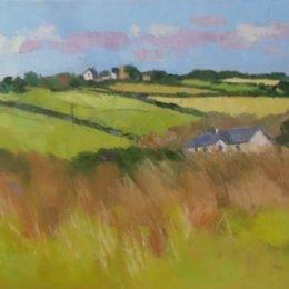 Pembrokeshire Fields 01