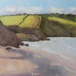 Pembrokeshire Fields 02