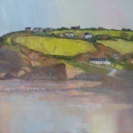 Pembrokeshire Fields 04