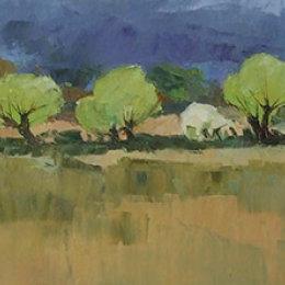 Spring Willows 2