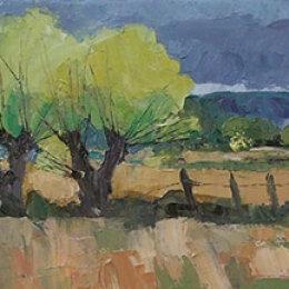 Spring Willows 3