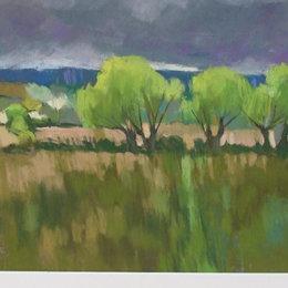 Spring Willows 5