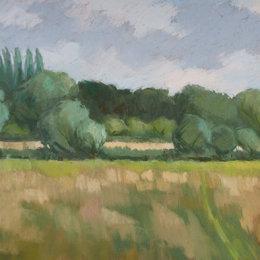Summer Meadows Iffley