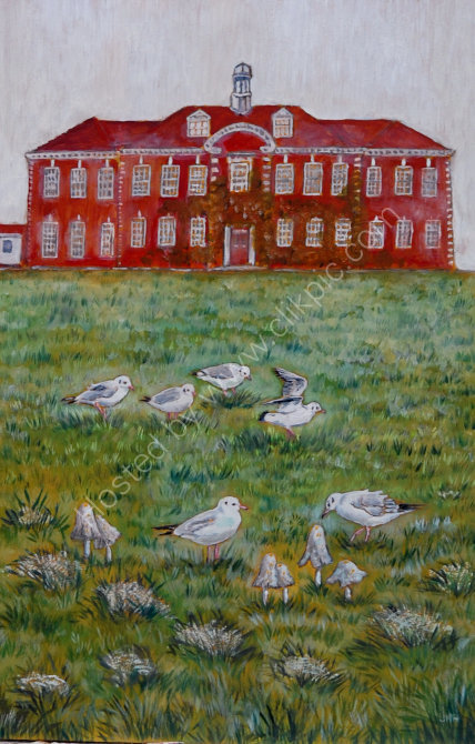 stroud high school and gulls SOLD
