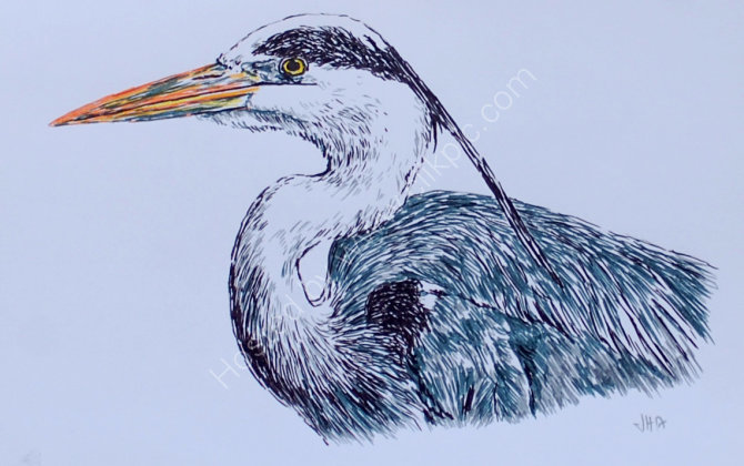 """grey heron 8""""x6"""" mixed media.did this while having chemo infusion autumn 2017 for sale"""