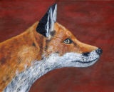 red fox SOLD