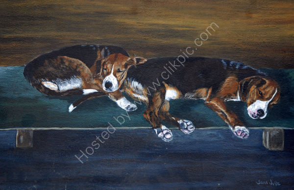sleeping hounds