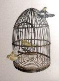 the vintage birdcage