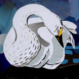 bewick swan portrait