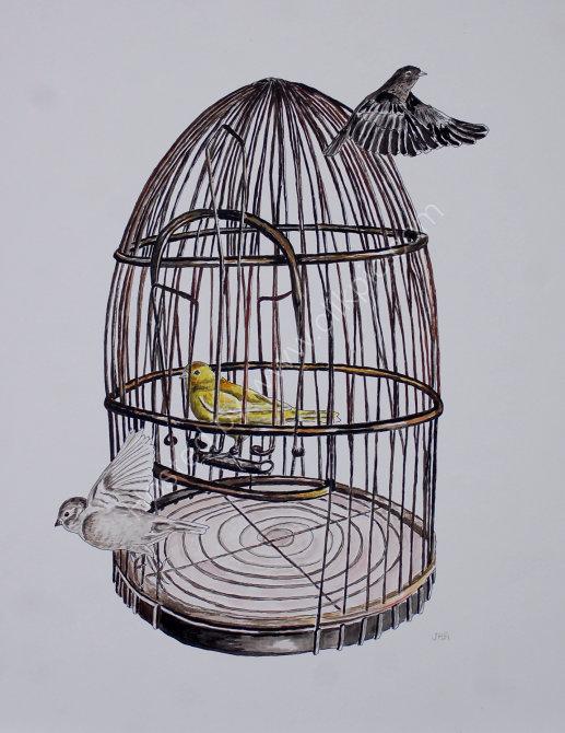 birdcage 2 SOLD
