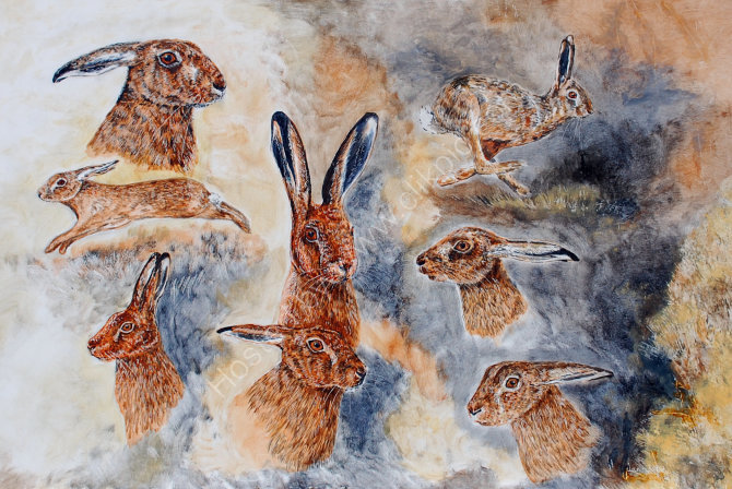 hare portraits and movement SOLD