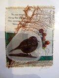 wagtail card