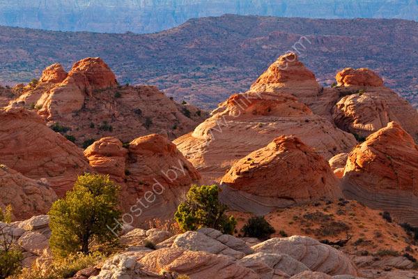 Little Cut, near Page, Arizona