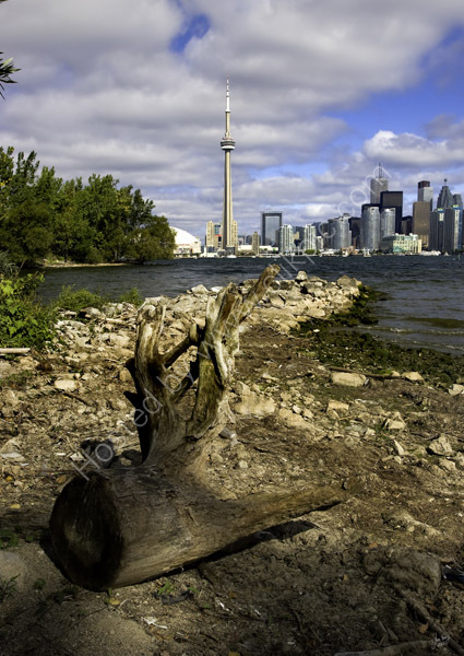 View of Toronto from Toronto Island Park 15th September 2007
