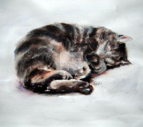 tabby, cat, sleeping, cute, beautiful painting, fine, art, watercolour, watercolor, cat lover