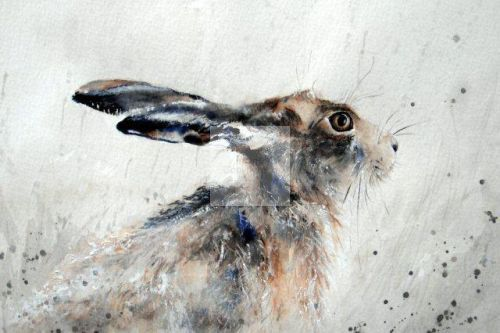 hare, giclée, art, print, fine art, contemporary, watercolour, wildlife, brown, limited edition signed print, forest animals, fine art, birthday present, Christmas, jack rabbit
